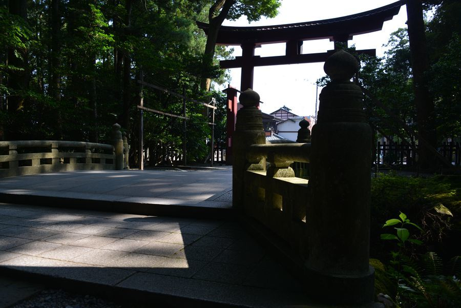 日陰の神社-3