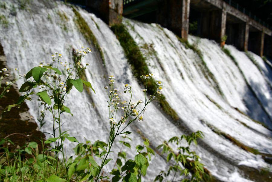 水源地ダム-2