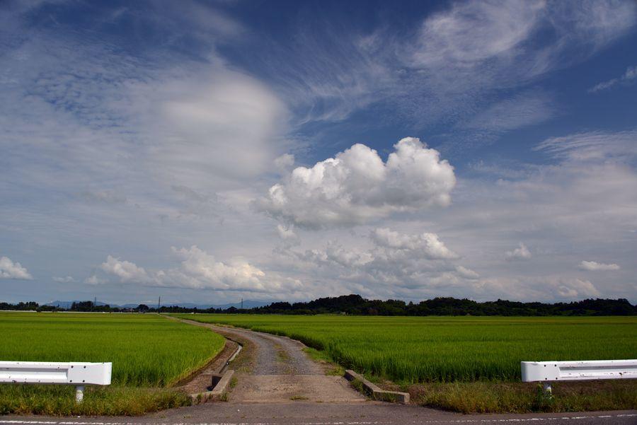 夏空に雲-5