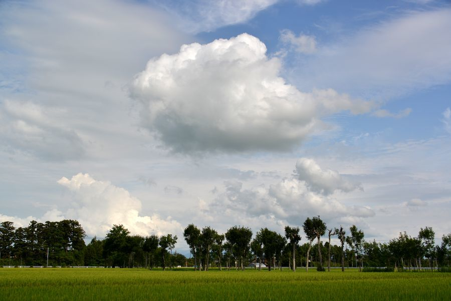 夏空に雲-6