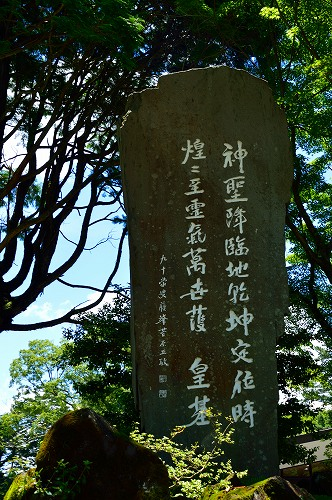 DSC_霧5613_01