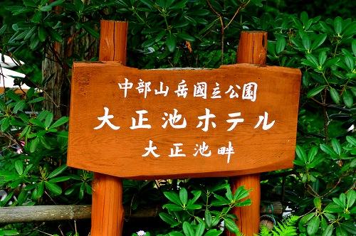 DSC_上6869_01