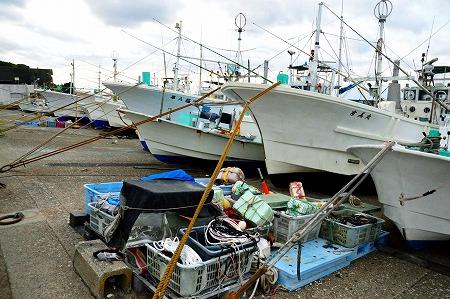 DSC_浜7607_01