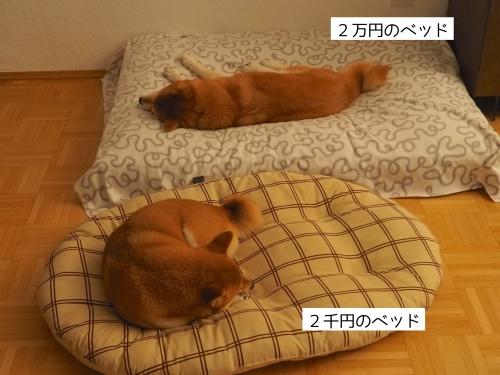 ベッドの値段