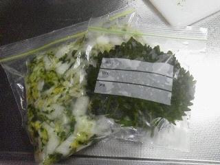 170728八木橋頂き物シソ塩浸け&パセリ白菜