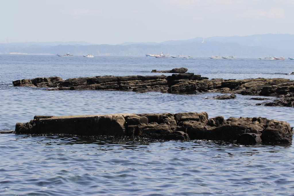 観音崎寄りの海域