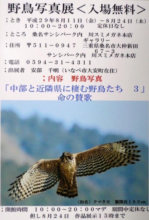 P1180249s.jpg