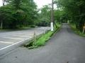 170811金勝寺から林道を下り、県道に合流