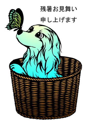 2017残暑お見舞い_ちょうちょと犬