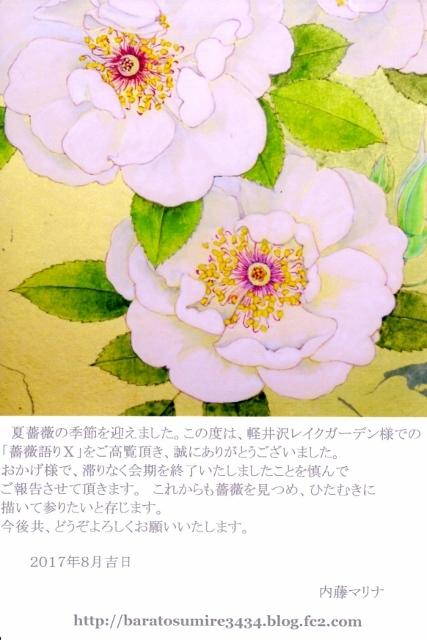 礼状Scan Data(427x640)