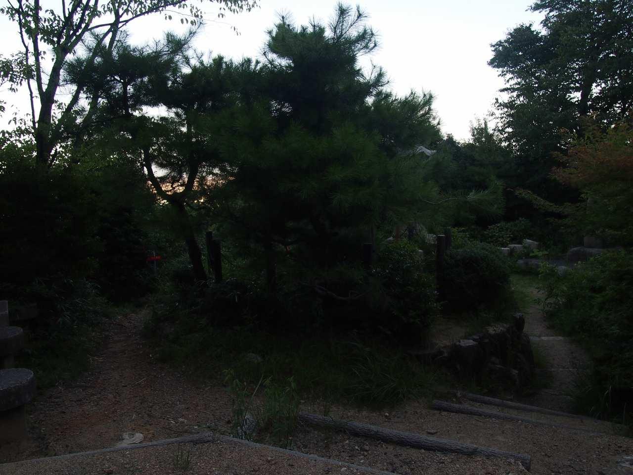 s-P1015324.jpg