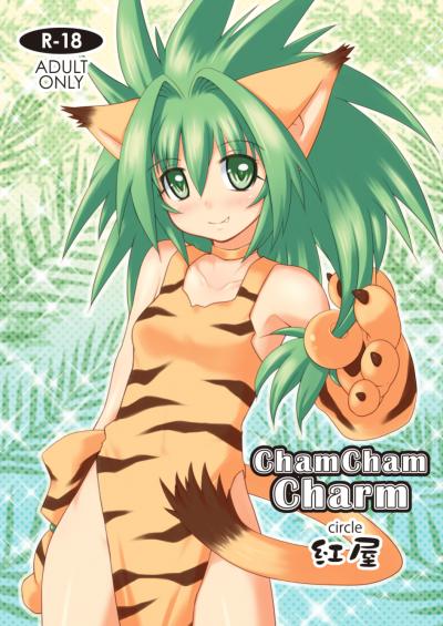 ChamChamCharm表紙
