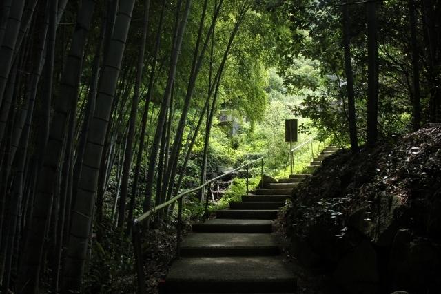 龍王神社 (5)