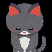 ネコお辞儀