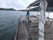 P201793、鳴門の筏で釣り