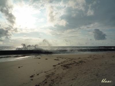 白浜(3)