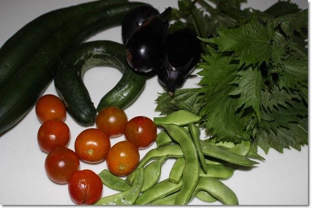 006野菜