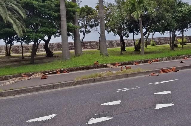 台風5号接近3