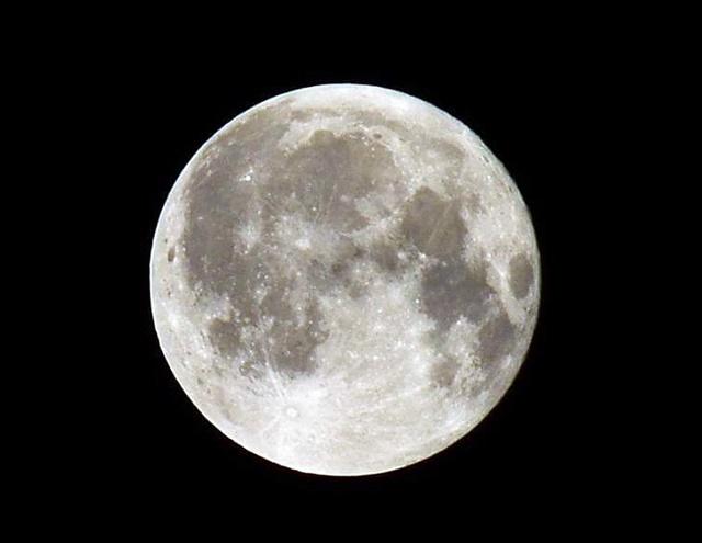 月見バーガー2