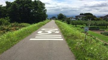 弘前歩き8-19 (3)_550