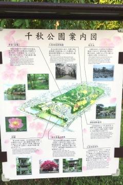 千秋公園歩き (3)_550