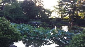 千秋公園歩き (6)_550