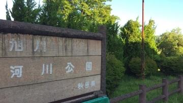 千秋公園歩き (14)_550