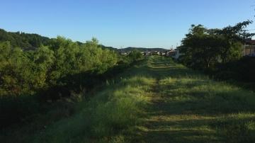 千秋公園歩き (17)_550