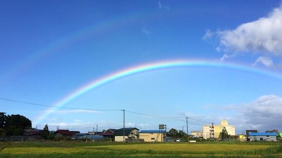 台風 (2)_550