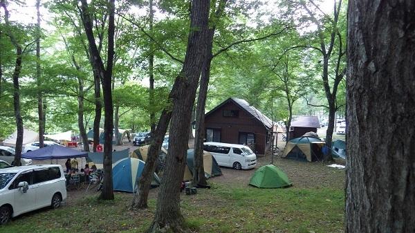 キャンプ人気