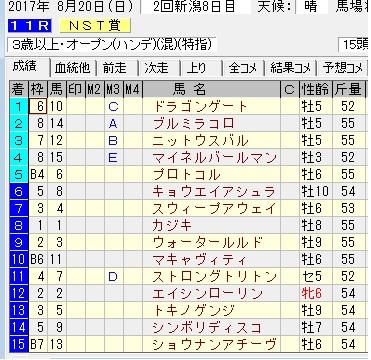 17NST賞結果
