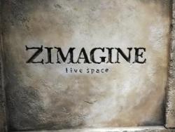 ZIMAGINE