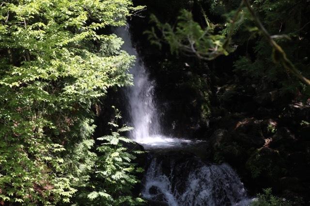 フレブル 川遊び 渓谷 7