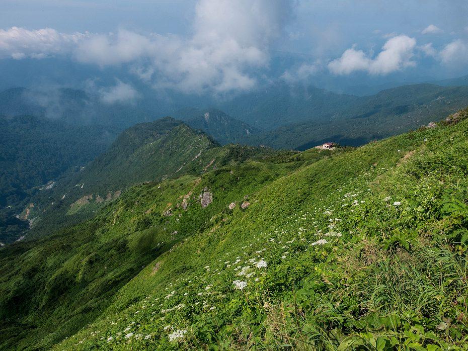 2017.08.21観光新道_白山1