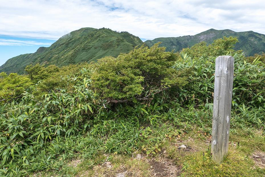 2017.08.31石徹白登山道上り19