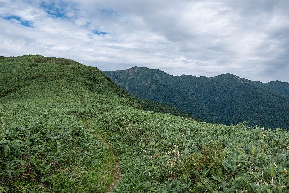 2017.08.31石徹白登山道上り14