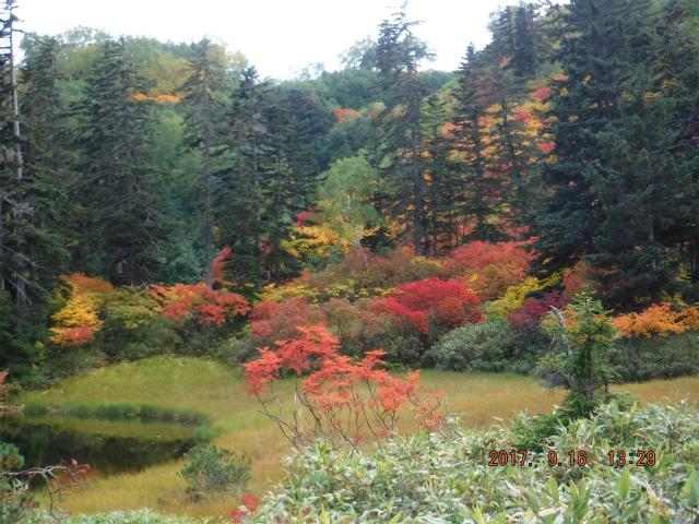 ブログ用高原温泉沼2