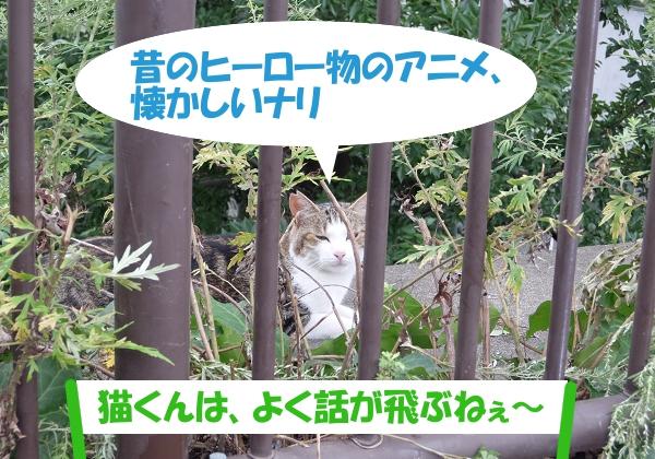 昔のヒーロー物のアニメ、懐かしいナリ 「猫くんは、よく話が飛ぶねぇ~」
