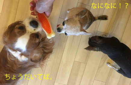 20170715 (6)