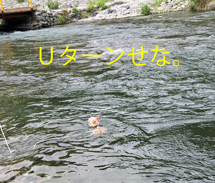 20170718 (4)