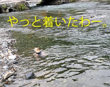 20170718 (7)