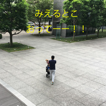 20170826 (9)