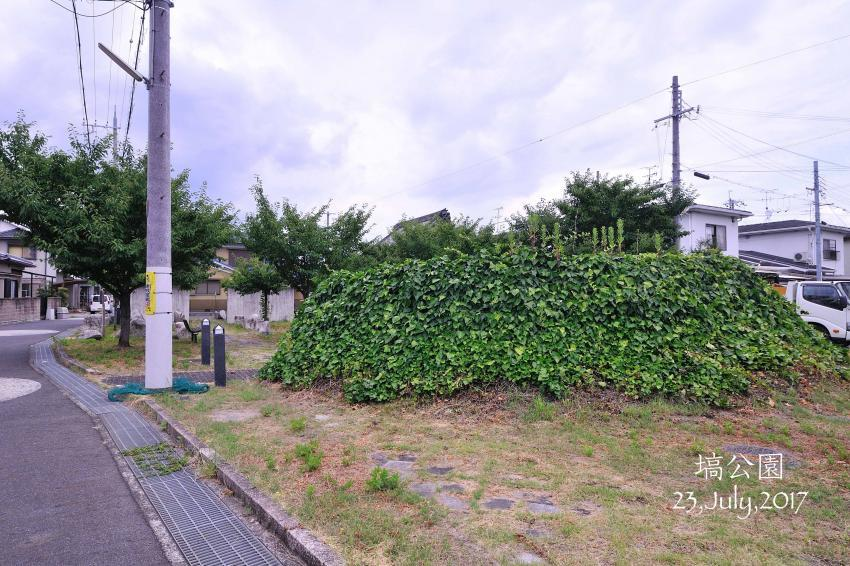 DSC_4512-L_convert_20170725093706.jpg