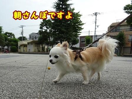 blog9809a.jpg
