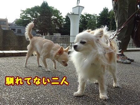 blog9810a.jpg
