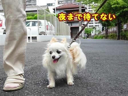 blog9829a.jpg