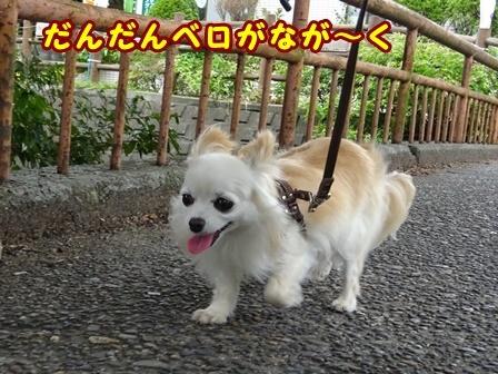 blog9836a.jpg