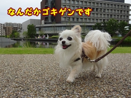 blog9845a.jpg