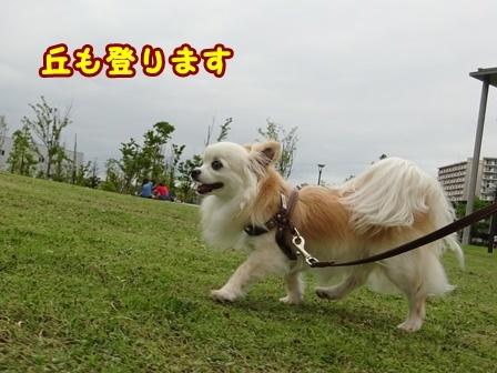 blog9847a.jpg