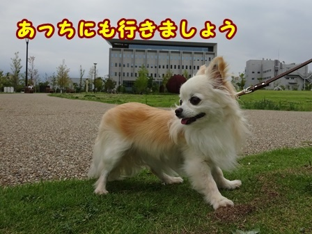 blog9856a.jpg
